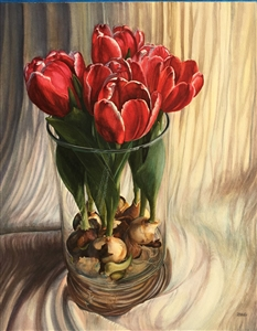 White-Edged Red Tulips