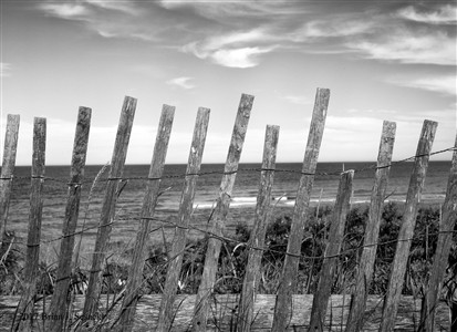 Snow Fence