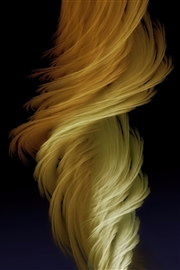 Renée No.1