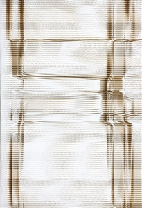 Quakes 31 Z