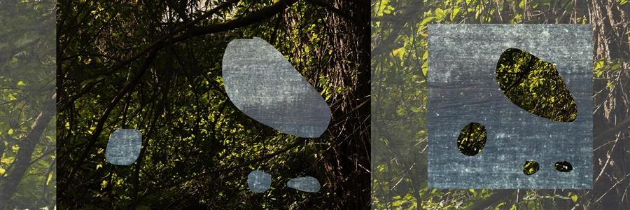 """El espíritu de la naturaleza Digital on Hahnemühle Paper 26"""" x 52"""""""