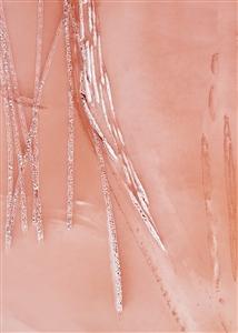 "Cascade on Coral Digital on Fine Art Paper 25"" x 20"""