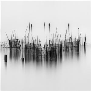 Harold Ong - Mystical Photograph on Hahnemühle Paper, Photography